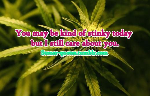 Stinky quote #1