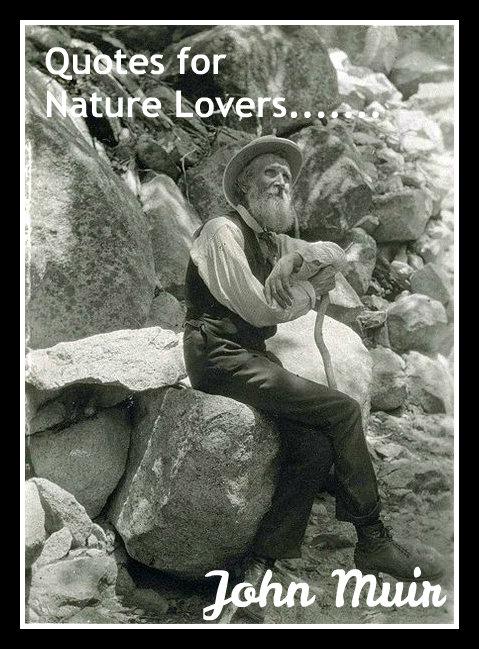 Study Nature quote #2