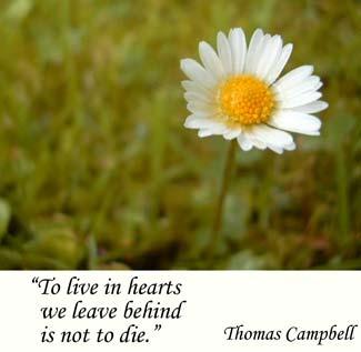 Sympathies quote #1