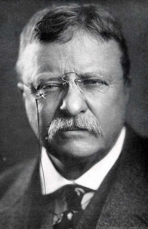 Teddy Roosevelt quote #1