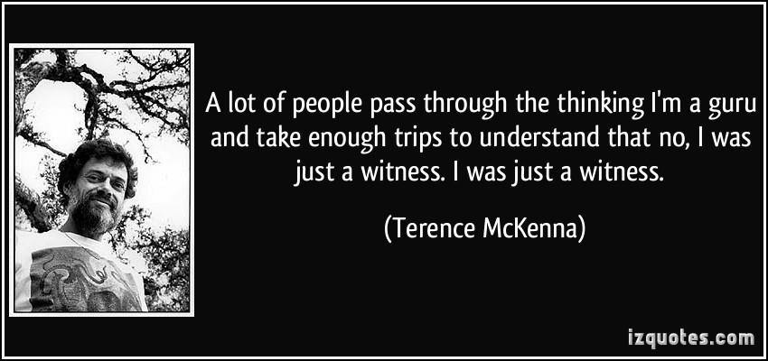Terence McKenna's quote #2
