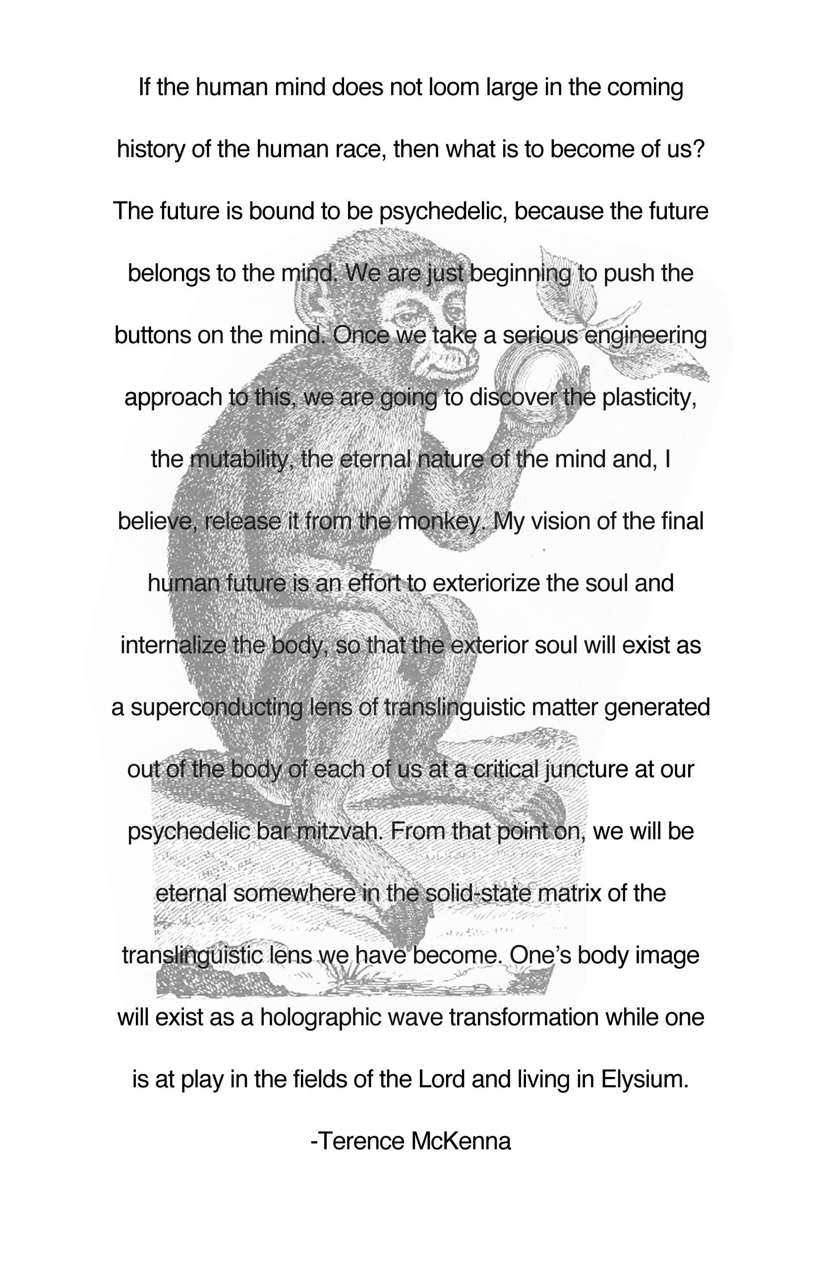 Terence McKenna's quote #6