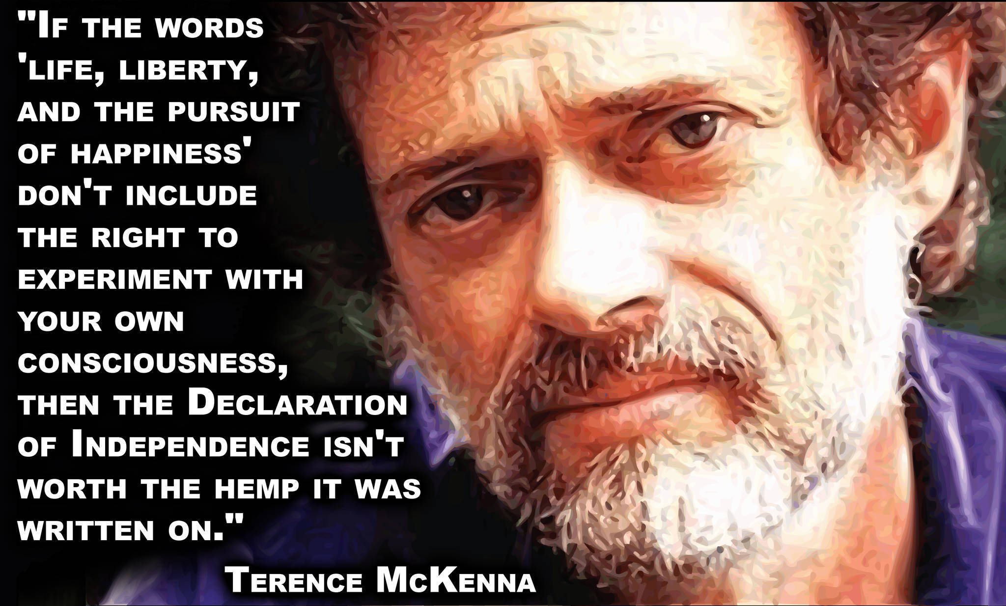 Terence McKenna's quote #1