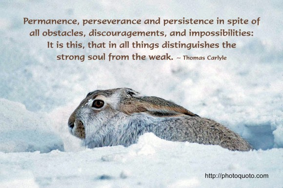 Thomas Carlyle's quote #3