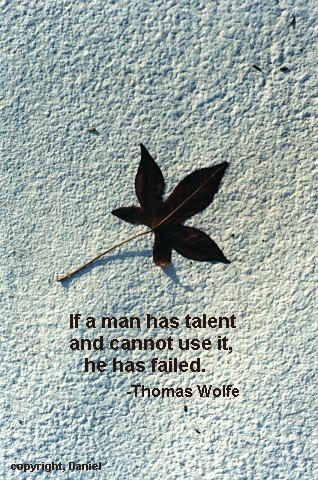 Thomas Wolfe's quote #5