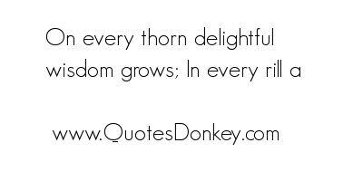 Thorn quote #1
