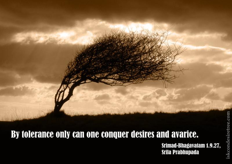 Tolerant quote #3