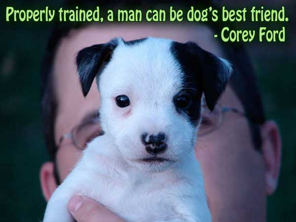 Trained quote #7