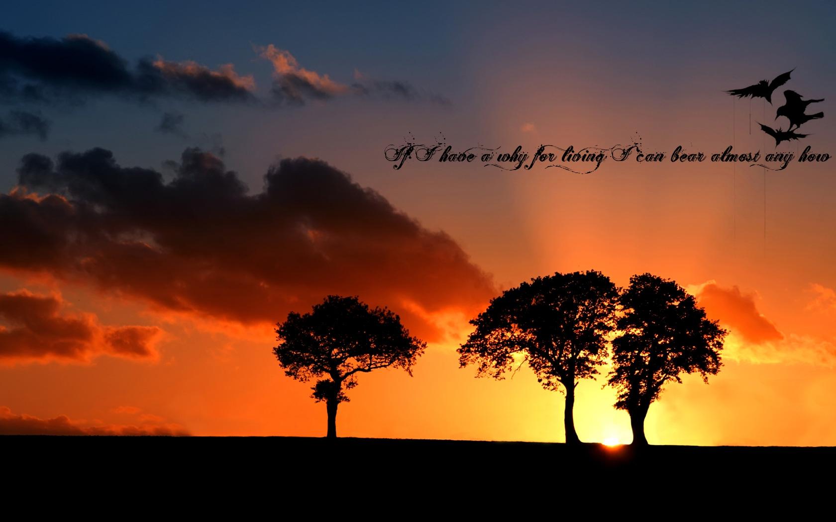 Trees quote #7