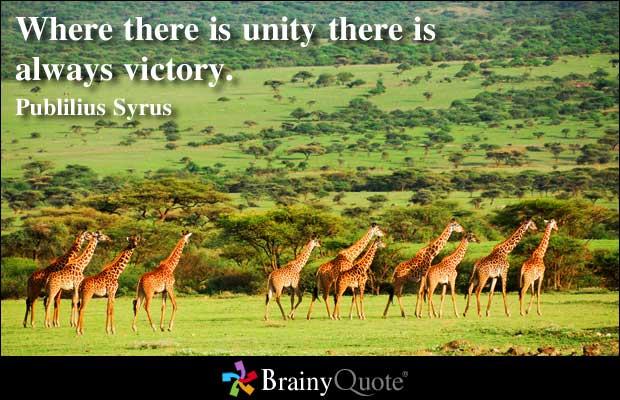 Unity quote #5