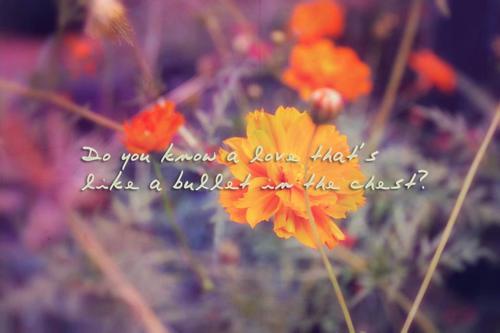 Vanessa Carlton's quote #7