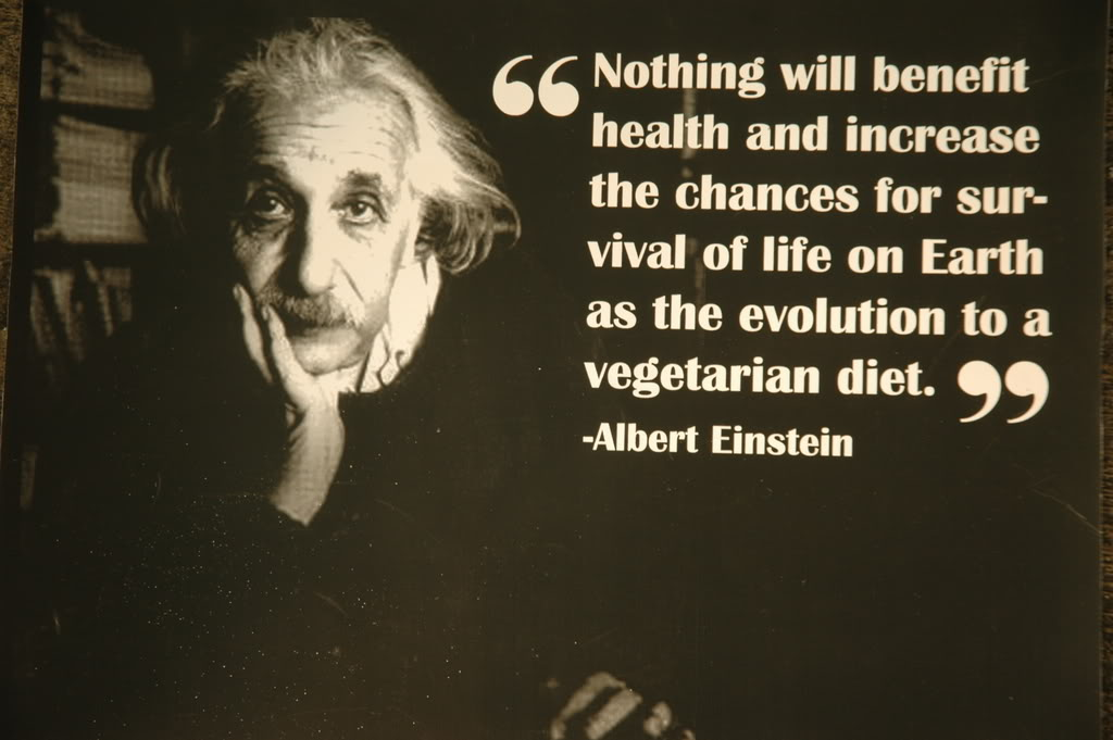 Vegetarian quote #2