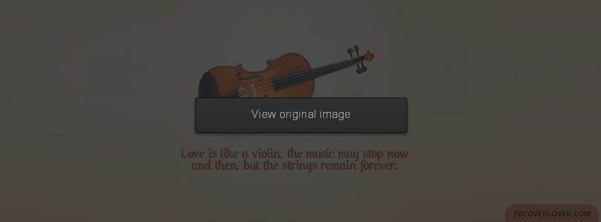 Violin quote #3