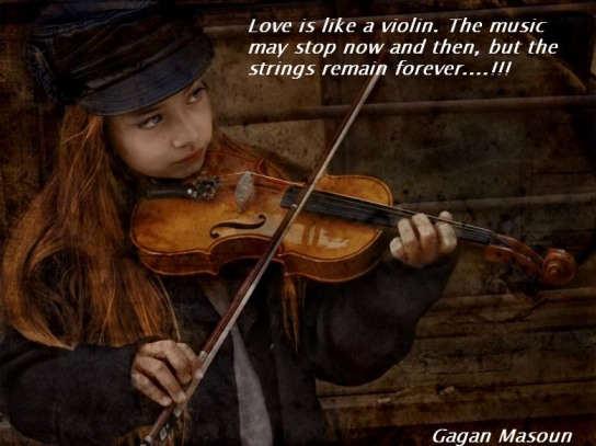 Violin quote #8