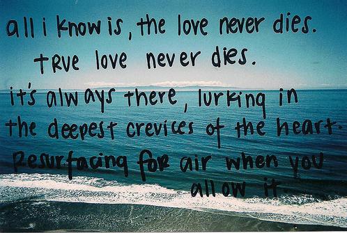 Vip quote #2
