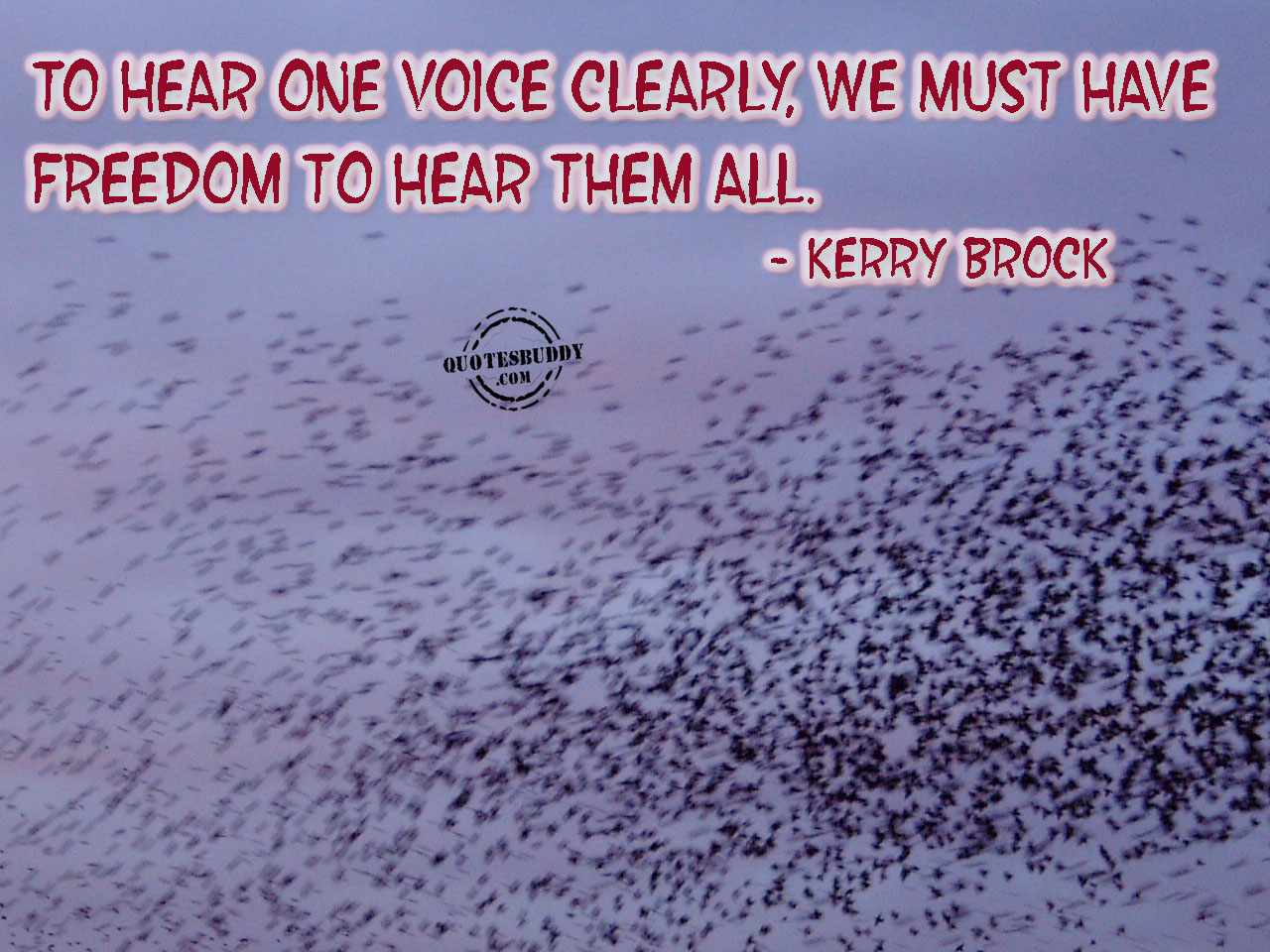 Voices quote #3