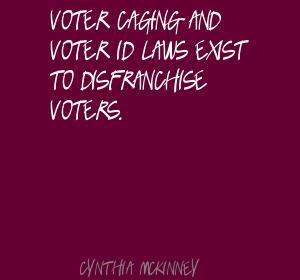 Voter quote #2