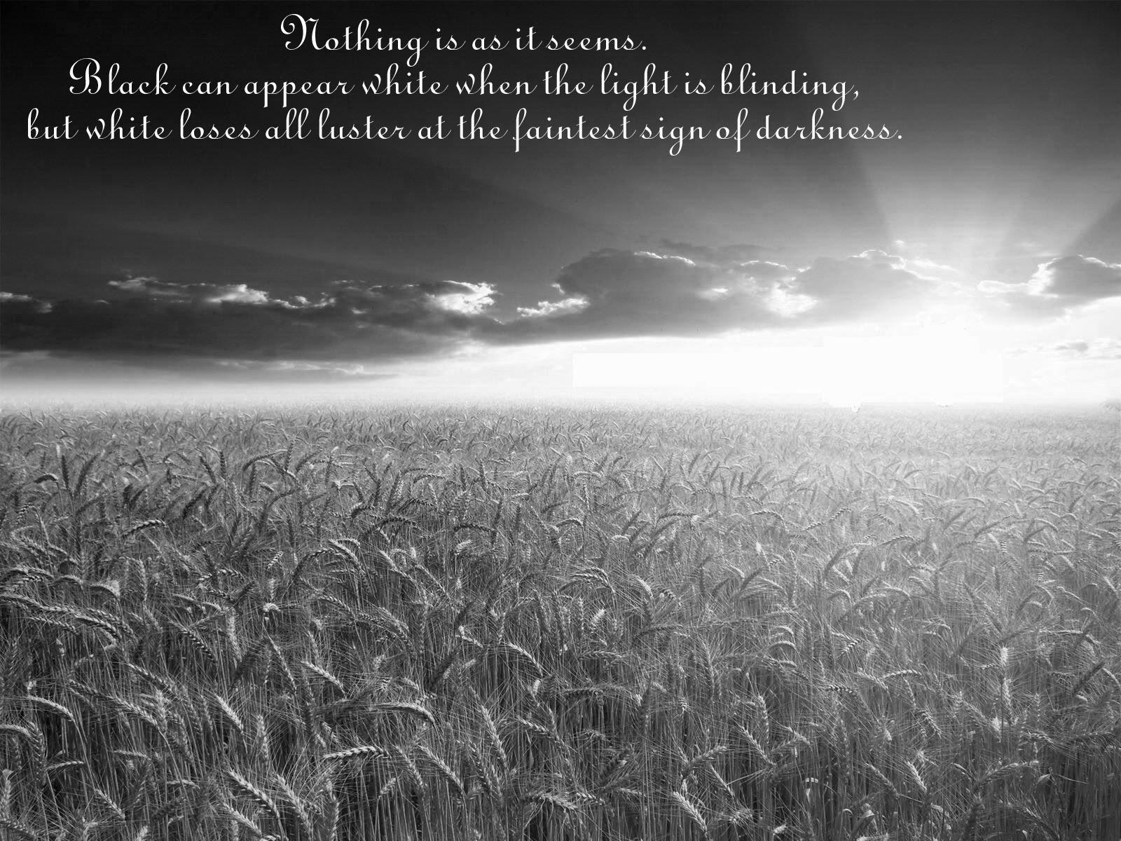 Wallpaper quote #1