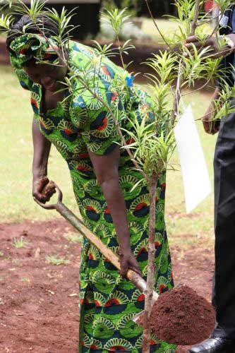 Wangari Maathai's quote #3