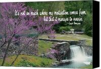 Waterfall quote #2