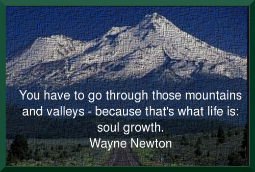 Wayne Newton's quote #4