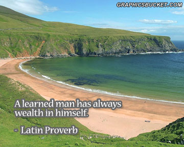 Wealth quote #2