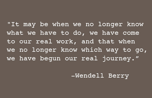 Wendell Berry's quote #6