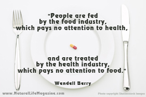 Wendell Berry's quote #4