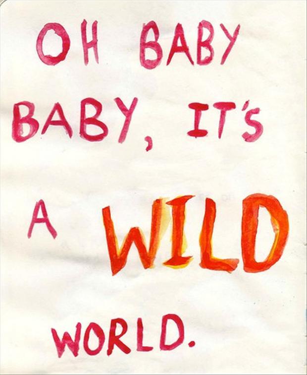 Wild quote #6