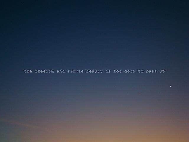 Wild quote #7