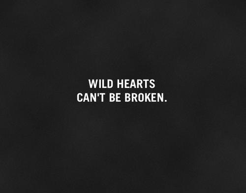 Wild quote #2