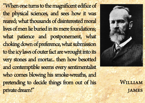 William James's quote #8