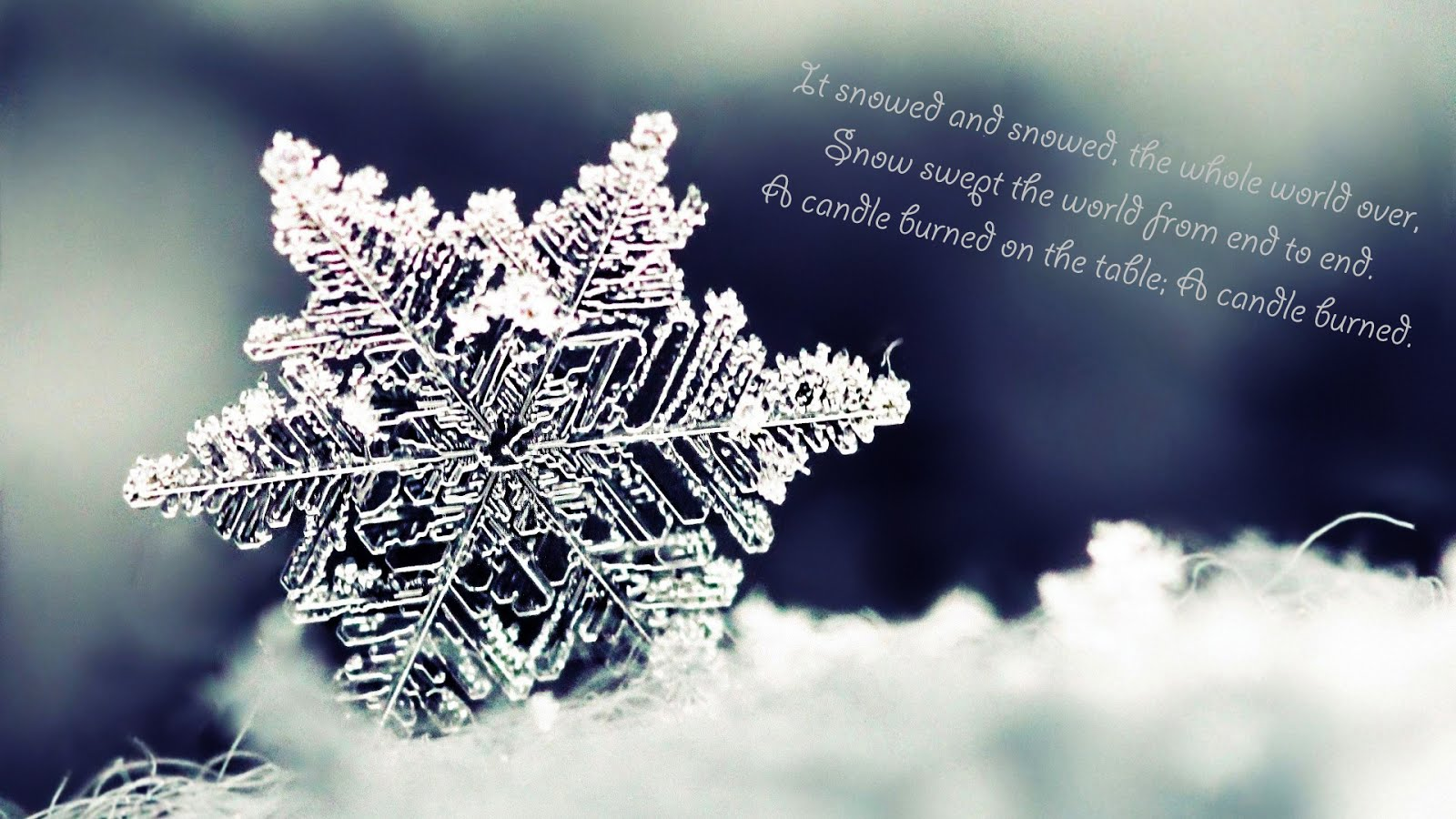 Winter quote #6