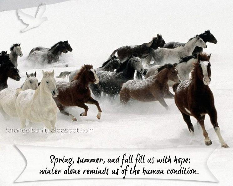 Winter quote #7