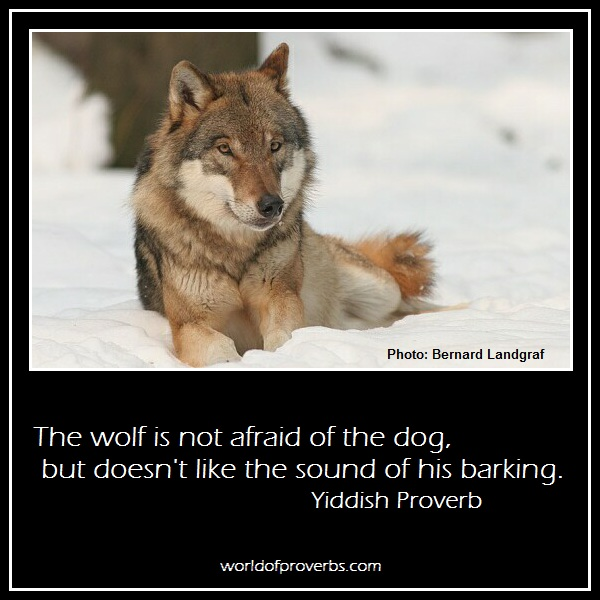 Wolf quote #7