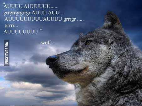Wolf quote #1