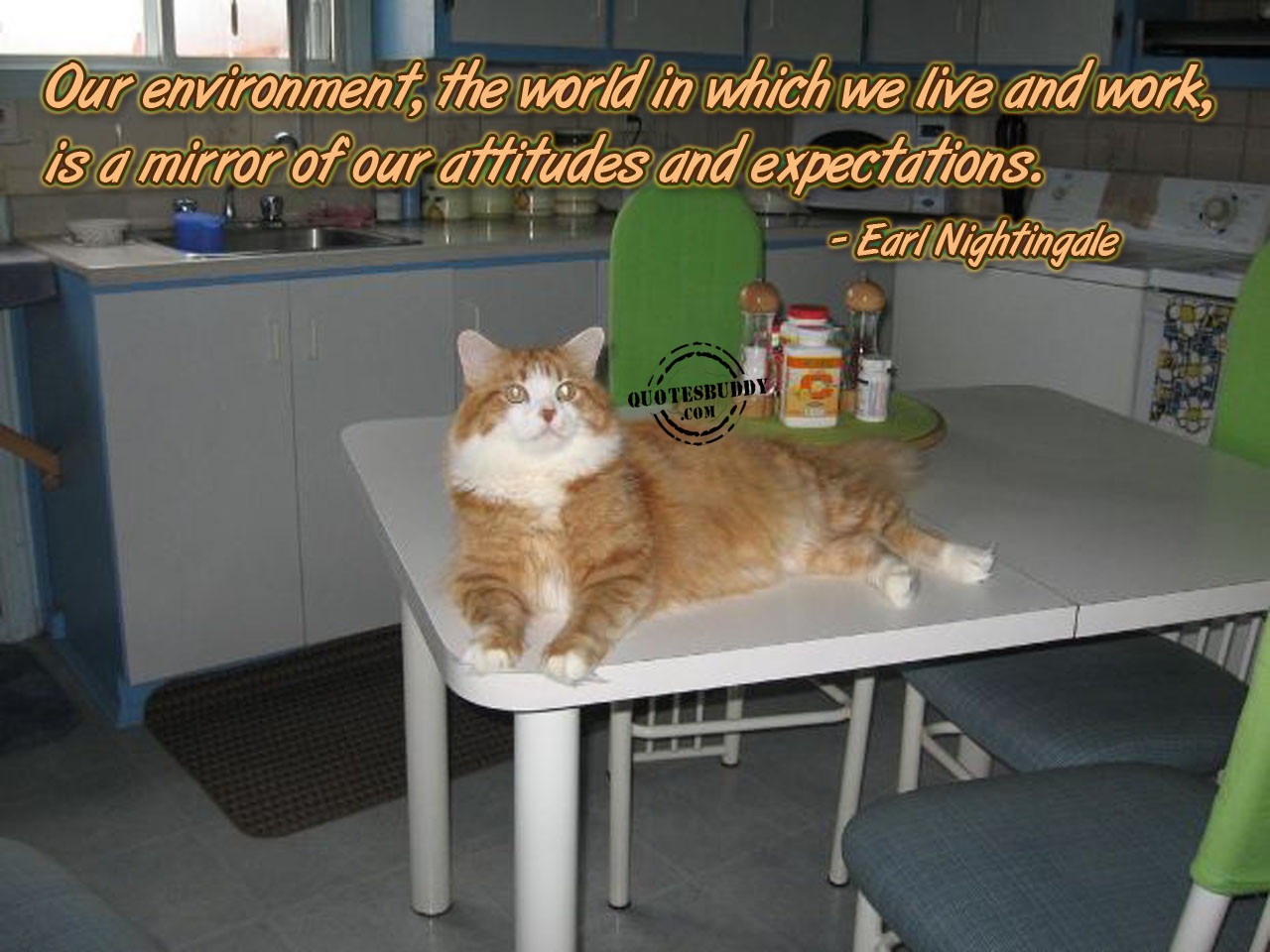 Work Environment quote #2