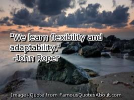 Adaptability quote #2