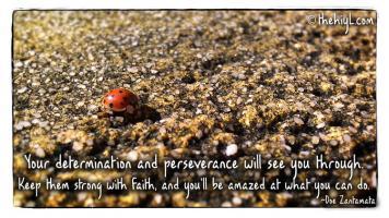 Amazed quote #7
