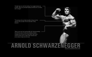 Arnold quote #2