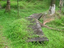 Beaten Path quote #2