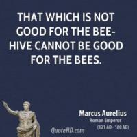 Bees quote #2