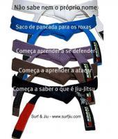 Belt quote #4