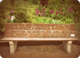 Benches quote #2