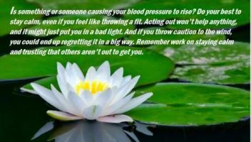 Blood Pressure quote #2