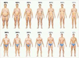 Body Fat quote #2