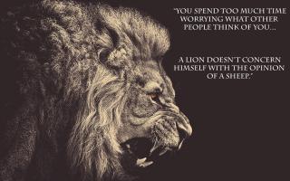 Bolivia quote #1