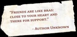 Bra quote #1