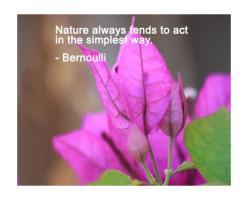 Breezes quote #2