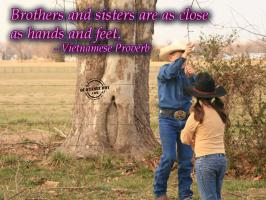 Brother And Sister quote #2